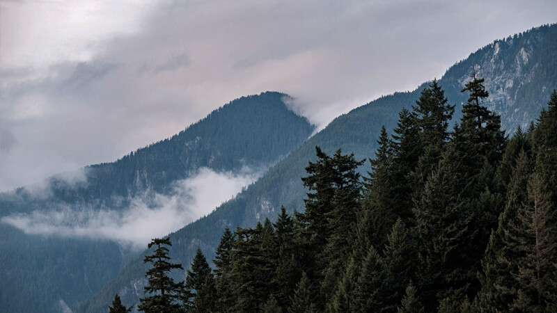 Scenery of mountains and clouds with forest in the foreground